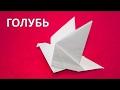Поделки - Оригами вместе с нами: Как сложить голубя из бумаги. Игры и поделки для детей