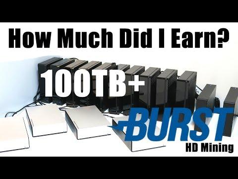 How Much Did I Earn? 100TB+ Burstcoin HardDrive Mining Rig