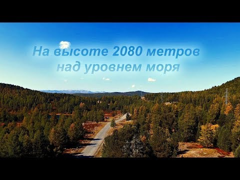 Самый высокий асфальтированный перевал на Алтае.