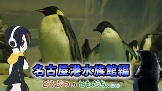 【動物紹介型Vtuber】どうぶつのともだち~名古屋港水族館~part1~【名無しのアデリー