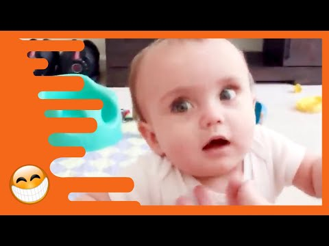 Try Not to Laugh with Funny Baby Video –  Best Baby Videos