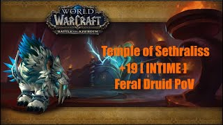 World of Warcraft Battle for Azeroth: Temple of Sethraliss +19 Feral Druid PoV 8.3