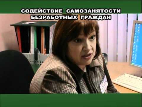 Центр занятости Плесецкого района