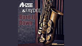 Burn It Down_Radio Edit