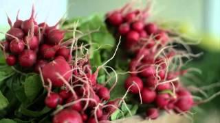 AHA Healthy Food Financing Initiative