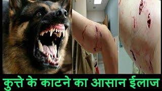 कुत्ते के काटने का सफ़ल ईलाज