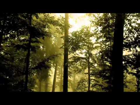 GWENDOLYNE -   Julio Iglesias