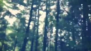 山路ドライビング 山路哲生 動画 29