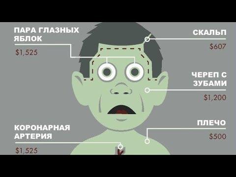Как отдать свои органы при жизни в россии