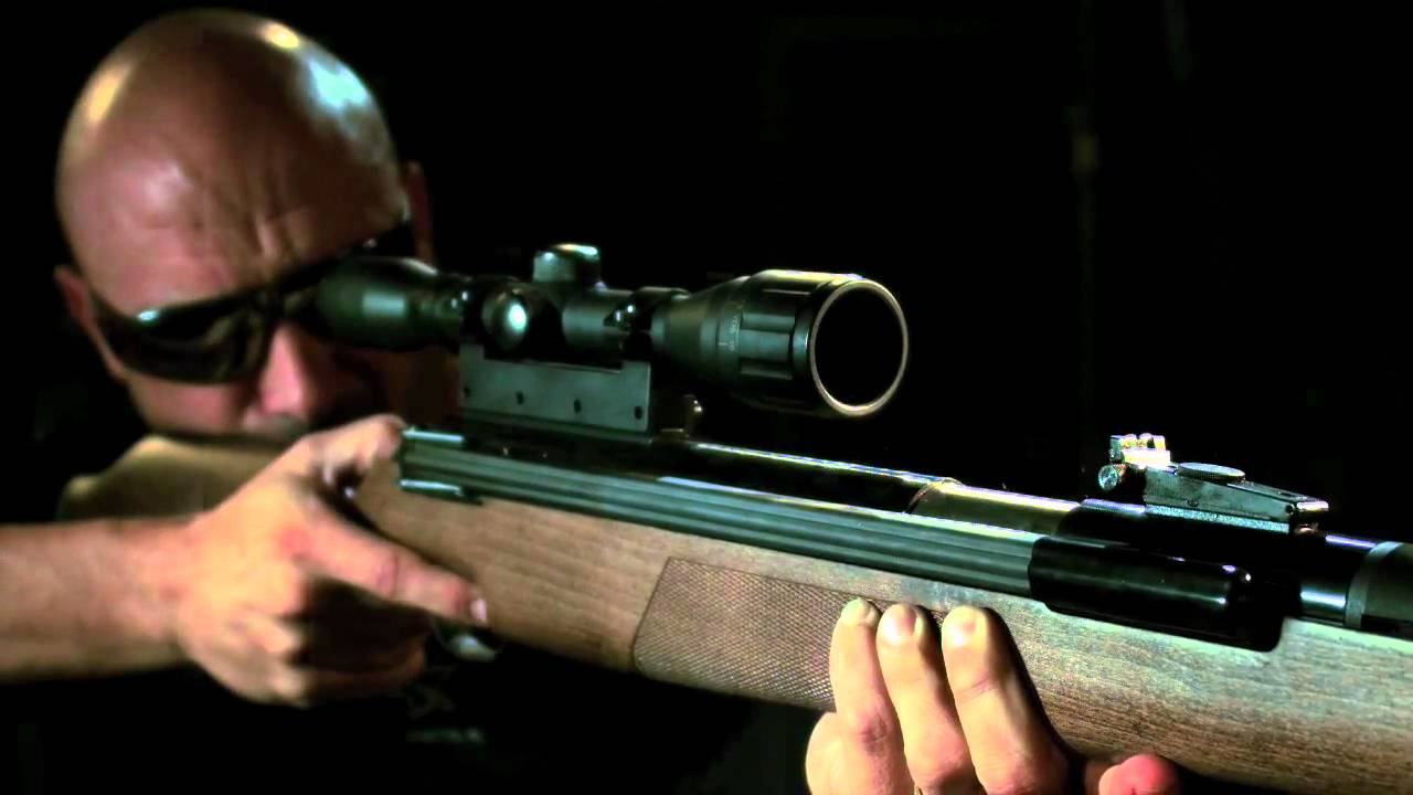 Diana model 52 vs diana airking review airguns reviews gunmart - Diana Model 52 Vs Diana Airking Review Airguns Reviews Gunmart 1