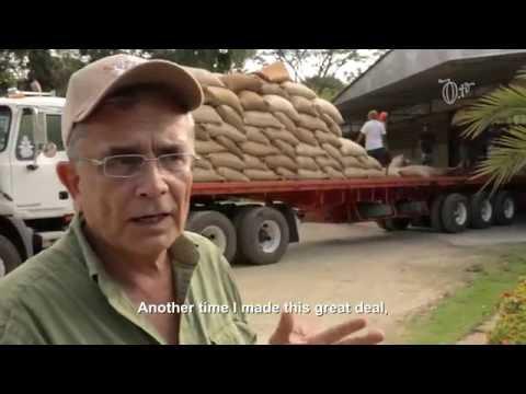 Cacao Traders - VIcente Franceschi