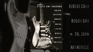 A Tribute to Stevie Ray Vaughn