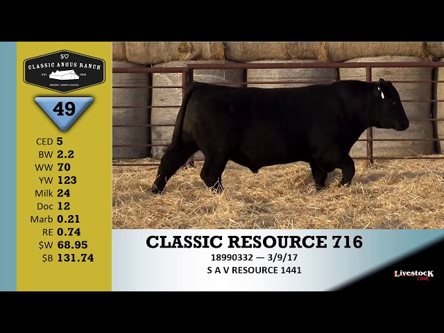 Classic Angus Ranch Lot 49