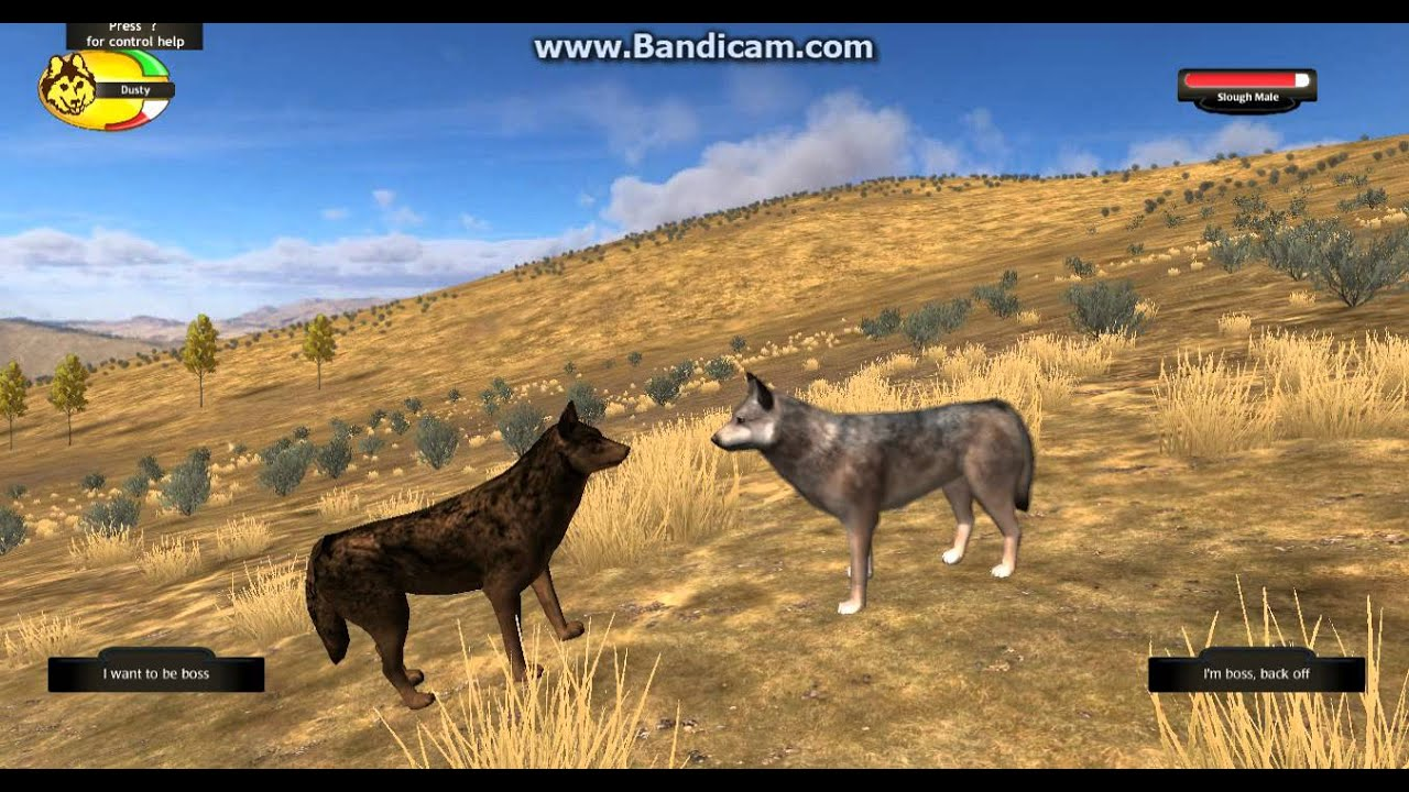 Play Wolf Quest For Free