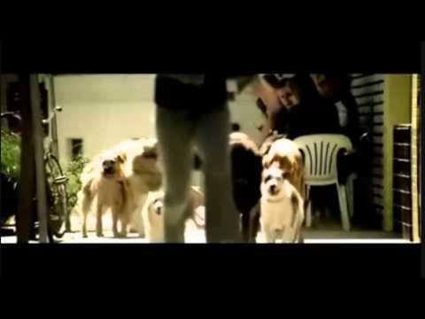 Bon Jovi & Usher - It's My Life / Confessions Part II (Glee Remix)