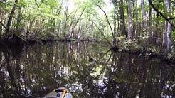 Big Davis Creek-Jacksonville, Fl