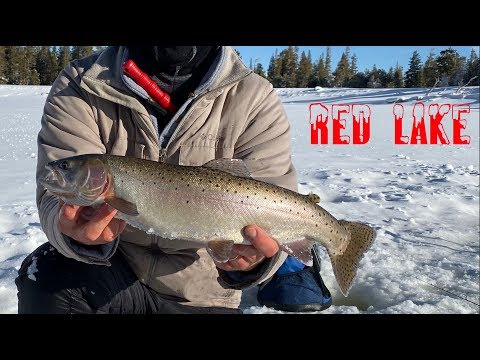 Red Lake!  California Ice Fishing For Cutthroat Trout!