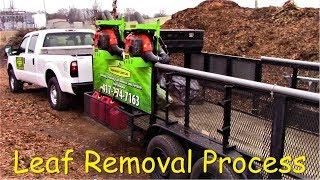 Leaf Removal Process
