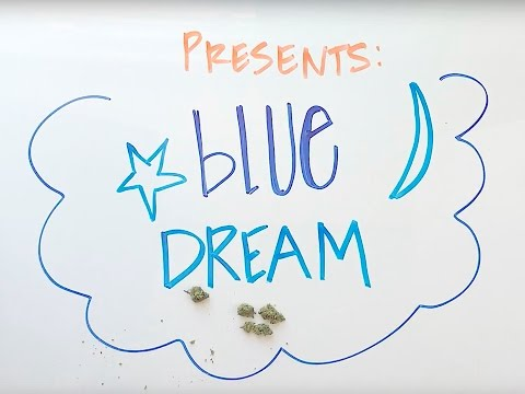 Blue Dream Strain Review