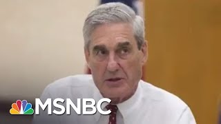 Donald Trump Faces 'A Long Winter' With Robert Mueller's Russia Probe | The 11th Hour | MSNBC