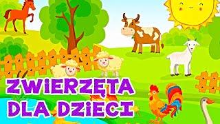 Farma - Zwierzęta domowe -  Bajka edukacyjna dla dzieci