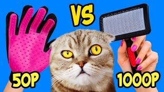ДОРОГО ДЕШЕВО: Кошачья ЩЕТКА Для Шерсти, Реакция КОШКИ