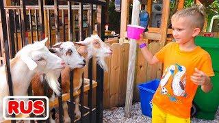 Влад и Никита играют с мамой на ферме