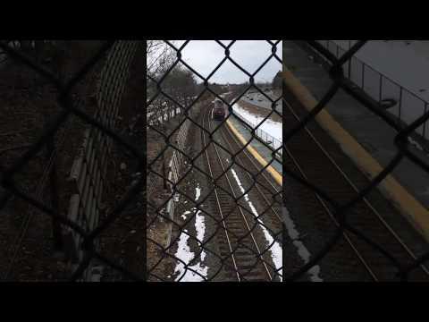 Amtrak Lake Shore Limited 449 passes through Auburndale