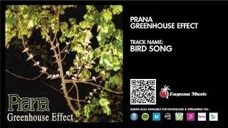 Prana - Bird Song