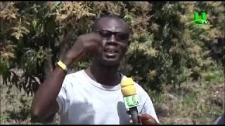 AYEKOO: Mango Farming in Ghana