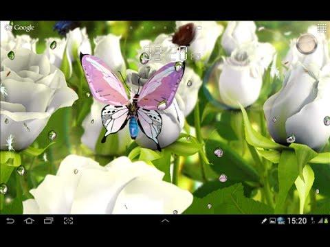 Летающие бабочки среди роз и ромашек