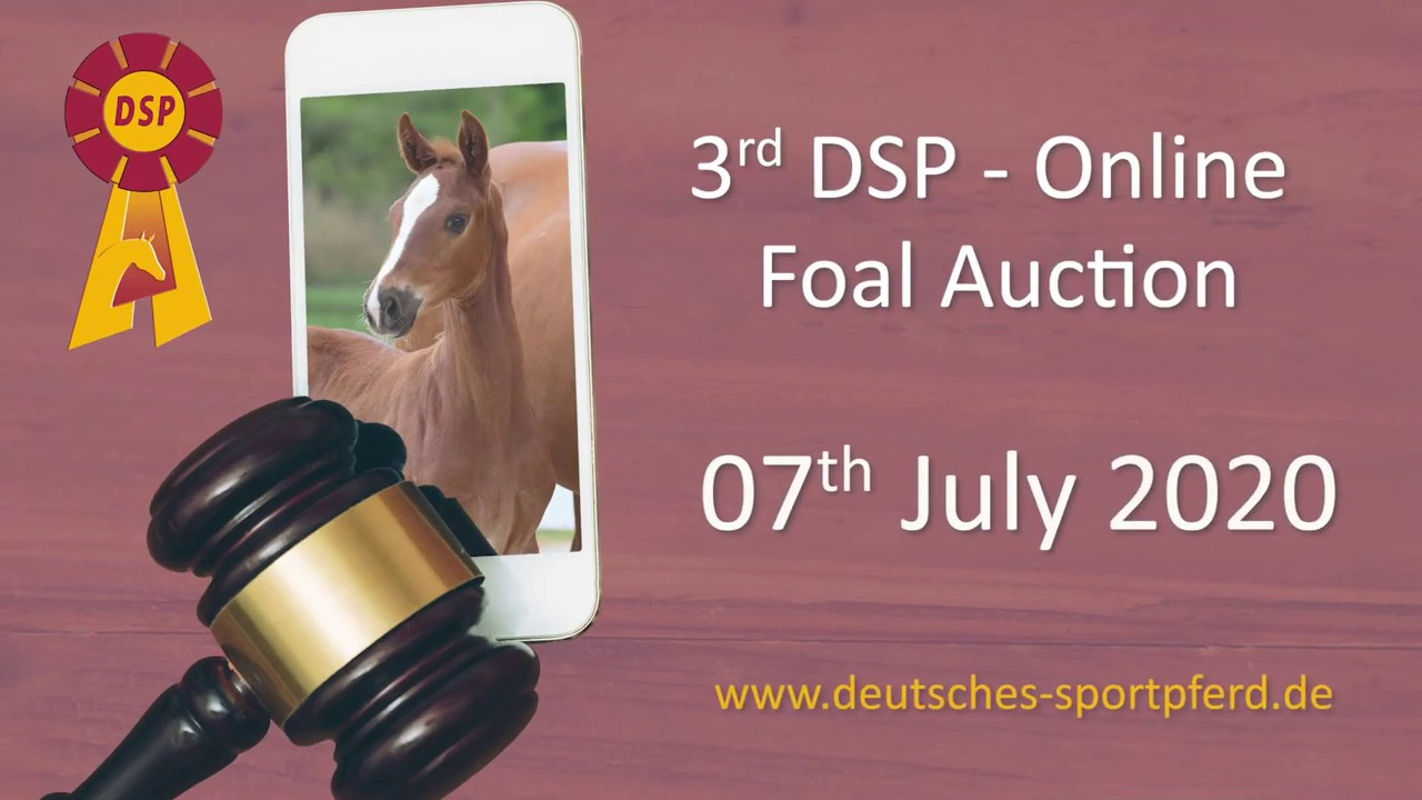 3rd DSP Foals Online-Auction - pure Dressage