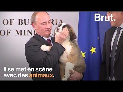 hqdefault - Vladimir Poutine