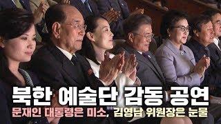 북한 예술단 감동 공연…문재인 대통령은 미소, 김영남 위원장은 눈물