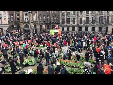 National Tulip Day 2018 at Amsterdam - Netherlands
