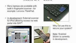 SAP Security: C-Level Review