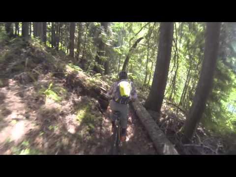 North Shore Trail.