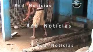 Red Noticias   San Marcos Guerrero y Lomas de Chapultepec