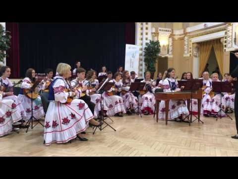 The Orchestra of Russian Folk instrument