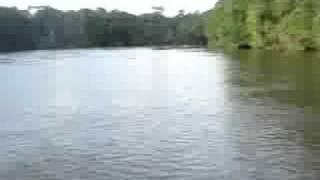 French Guyana..Ladynatty973