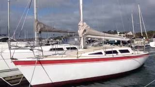 Northshore 33 for sale Australia