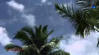 ✿ ♡ ✿ ENNIO MORRICONE - Le vent, le cri