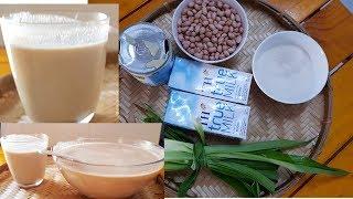 Cách làm Sữa Đậu phộng ( Lạc) bổ dưỡng ,thơm ngon cho cả nhà |Thanh Tâm Food