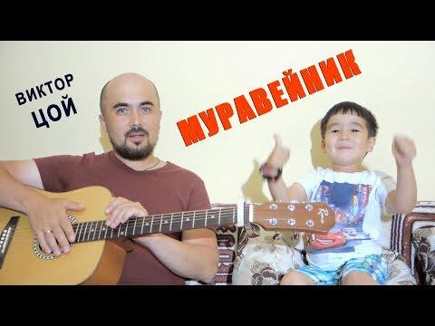 Муравейник. Cover на песню Виктора Цоя #папиновоспитание