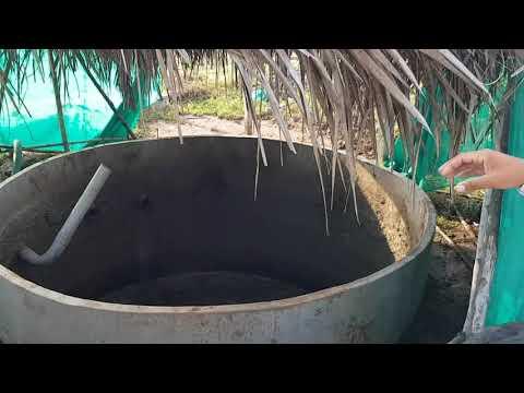 ORGANIC FARMING IN INDIA! Two Brothers Oragnic Farms Tour