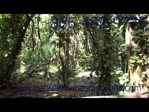 5 Hour Hawaii Movie Tour With LOST Locations