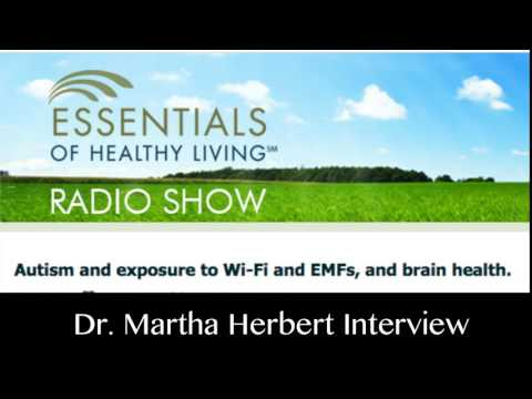 Dr. Martha Herbert:  Wireless and Autism on Village Green Radio Show