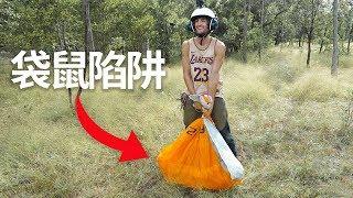 信誓蛋蛋在澳洲求生做陷阱抓猎物吃【第七集】