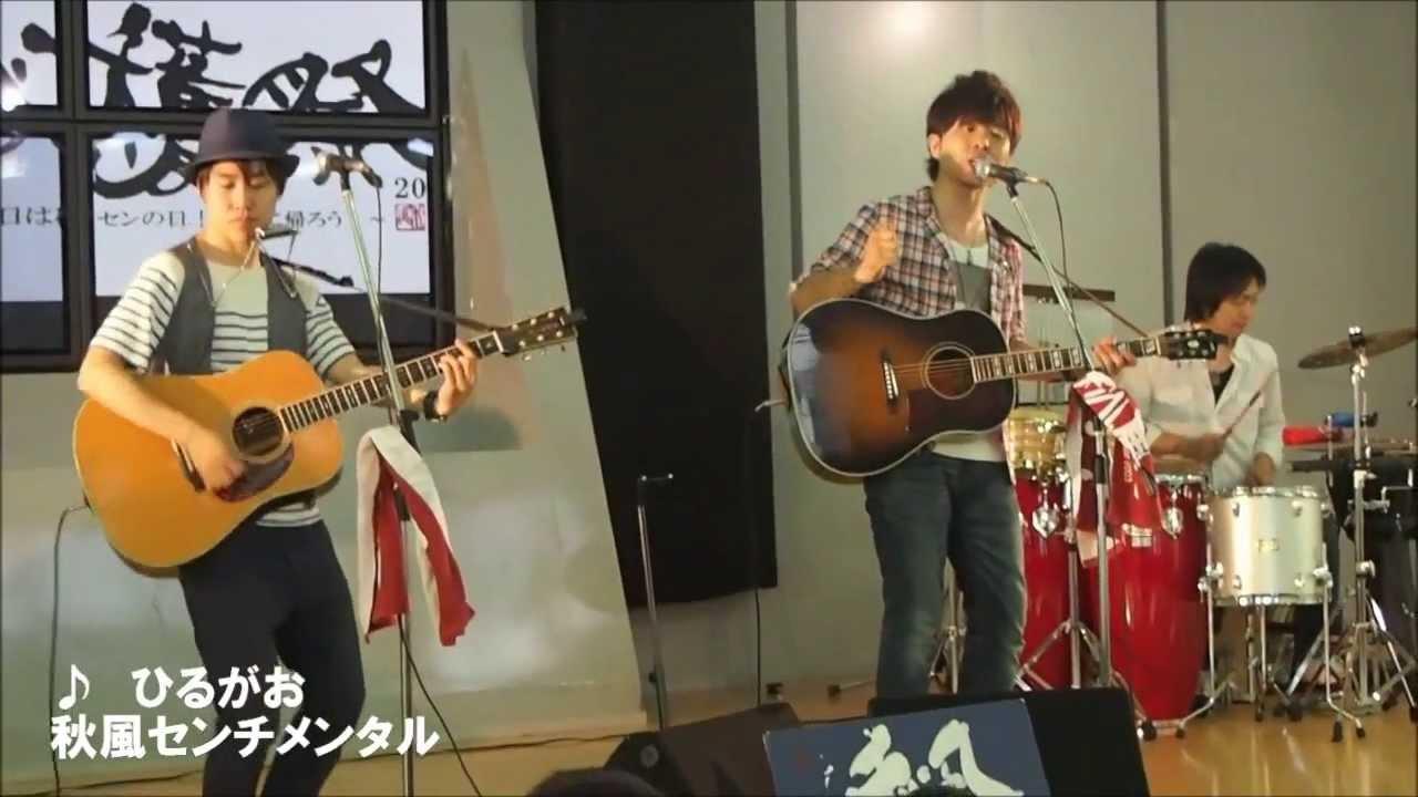 ひるがお / 秋風センチメンタル ...