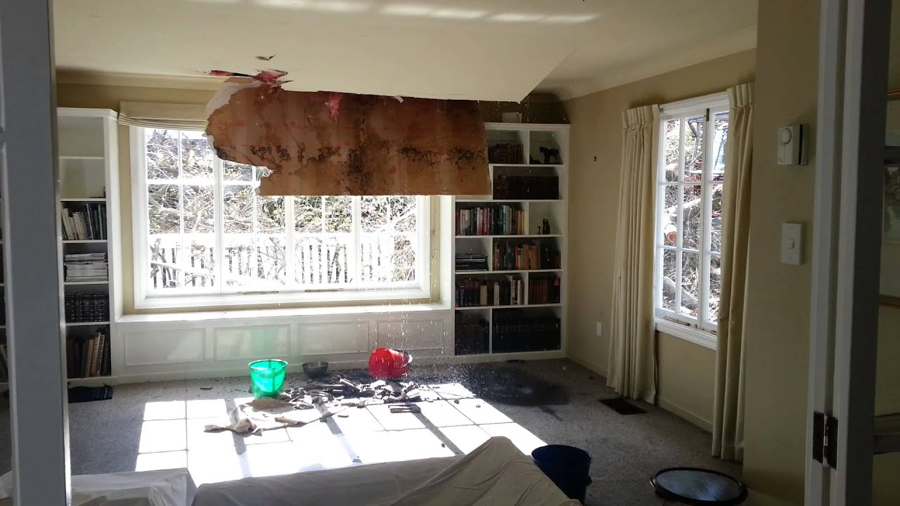 Ceiling Caving In After Tree Falls Through Roof Chch